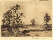 Print, etching, Spring in the New Forest, Hampshire, by Christine M Wells, 1900s-10s?