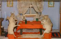 Taxidermy, Baby Rabbits Playing Cards, mounted in a display case, prepared by William Chalkley, The Square, Winchester, Hampshire, about 1890s to early 1900s the mammals are 4 brown rats, Rattus novegicus, considerably altered to resemble baby rabbits