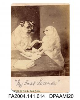 Photograph of a painting, two dogs seated at a table with legal briefs beneath their paws, photograph taken by The London Stereoscopic and Photographic Companyvol 1, page 74
